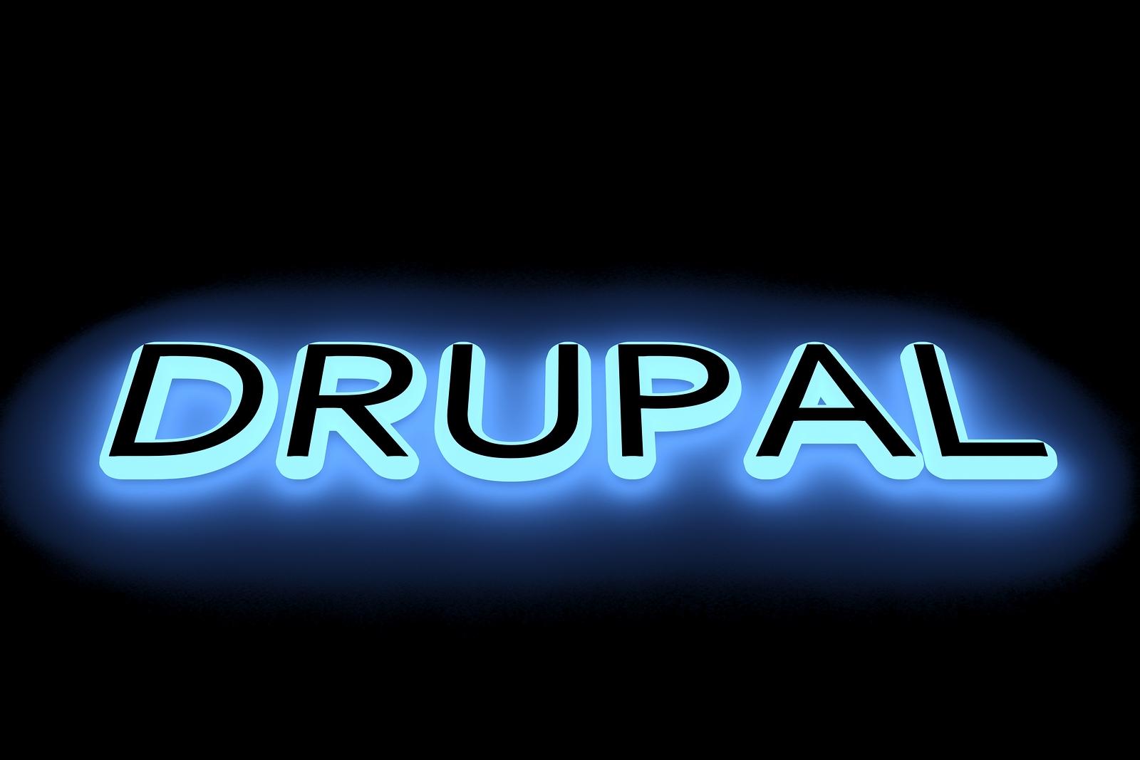 Expert Drupal Programmer