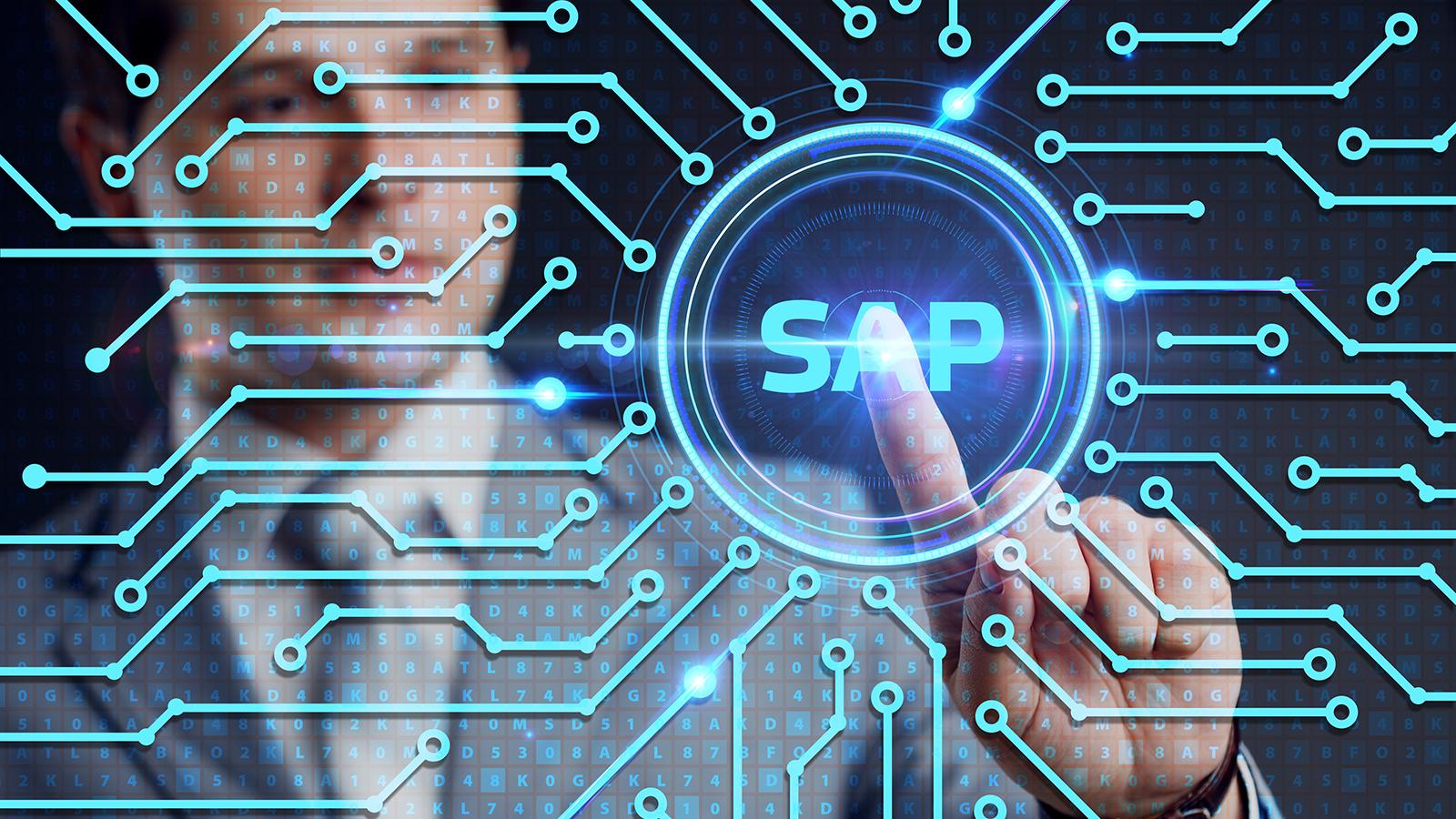 SAP Development Company