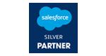 Saleforce Partner